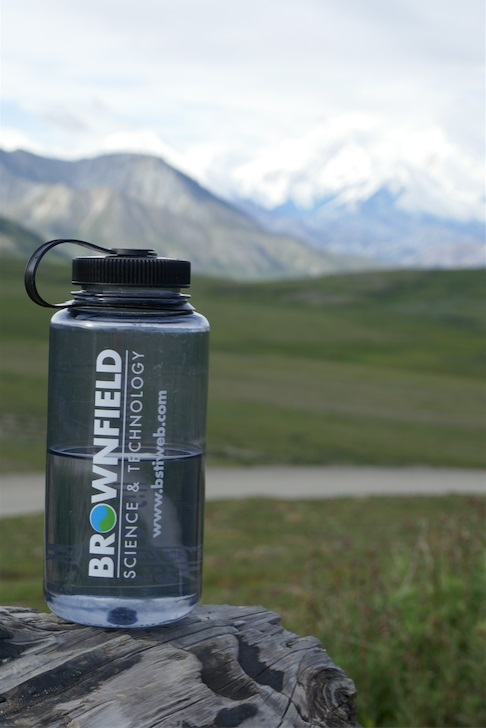 Discovering the beauty of Denali National Park