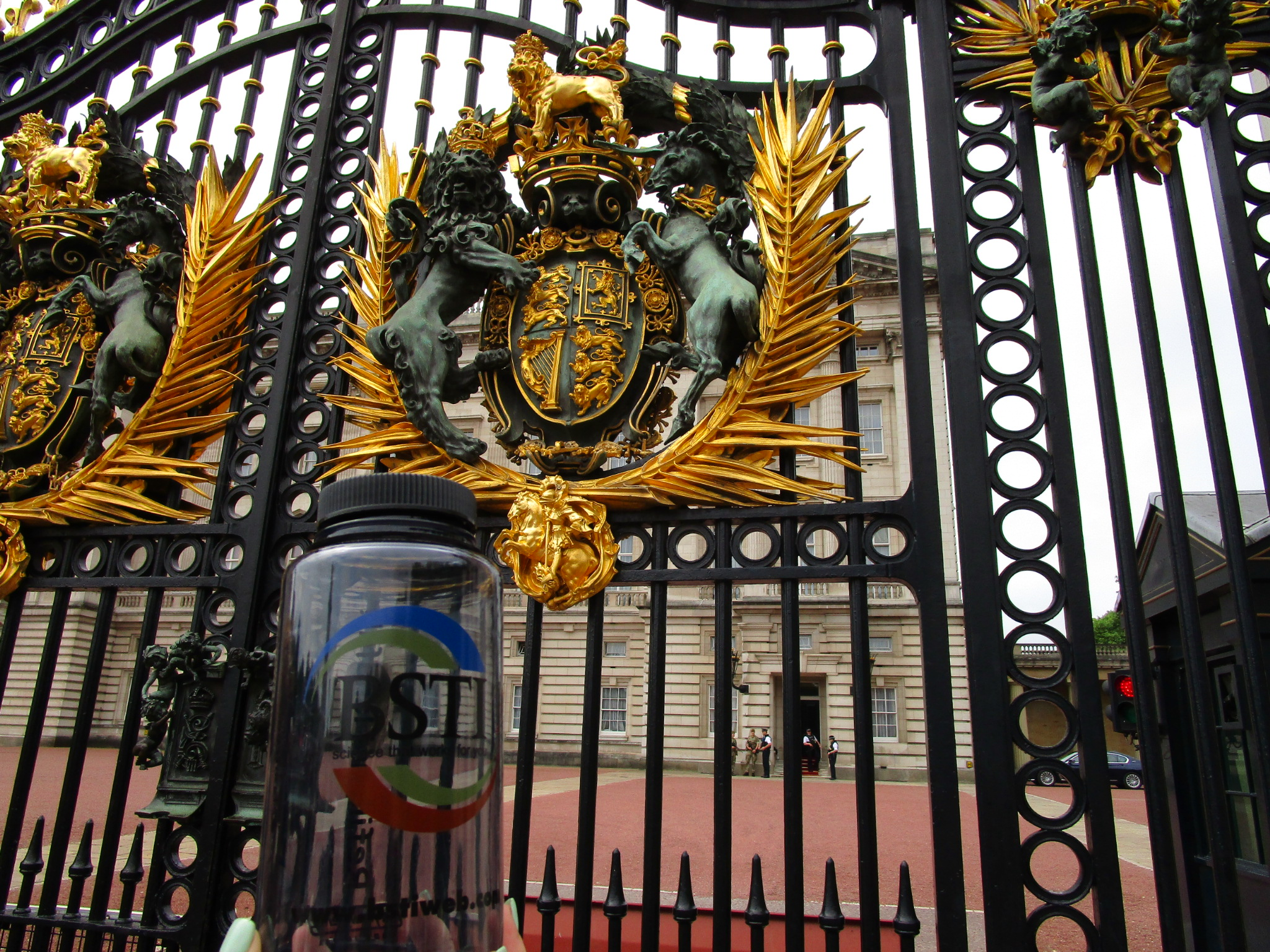 Knocking on the gates of Buckingham Palace