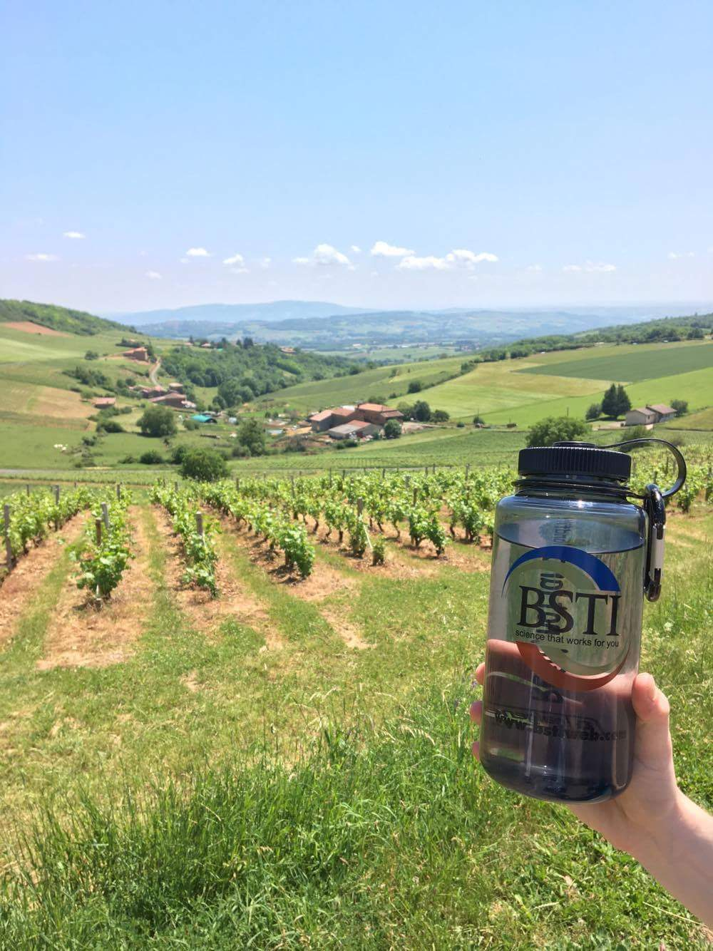 Hiking the vineyards of Beaujolais, France